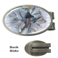 Winter Frost Ice Sheet Leaves Money Clips (oval)