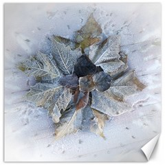 Winter Frost Ice Sheet Leaves Canvas 16  X 16