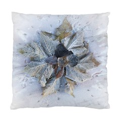 Winter Frost Ice Sheet Leaves Standard Cushion Case (two Sides)