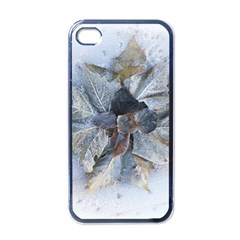 Winter Frost Ice Sheet Leaves Apple Iphone 4 Case (black)