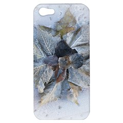 Winter Frost Ice Sheet Leaves Apple Iphone 5 Hardshell Case