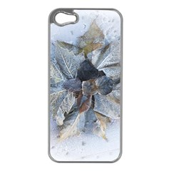 Winter Frost Ice Sheet Leaves Apple Iphone 5 Case (silver)