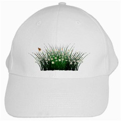 Spring Flowers Grass Meadow Plant White Cap
