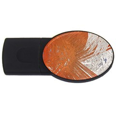 Abstract Lines Background Mess Usb Flash Drive Oval (4 Gb)