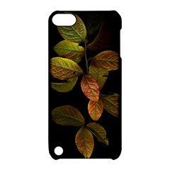 Autumn Leaves Foliage Apple Ipod Touch 5 Hardshell Case With Stand