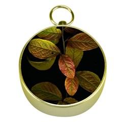 Autumn Leaves Foliage Gold Compasses