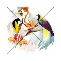 Exotic Birds Of Paradise And Flowers Watercolor Acrylic Tangram Puzzle (6  X 6 )