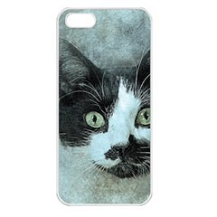 Cat Pet Art Abstract Vintage Apple Iphone 5 Seamless Case (white)