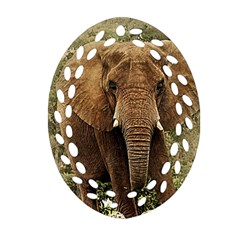 Elephant Animal Art Abstract Oval Filigree Ornament (two Sides)