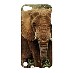 Elephant Animal Art Abstract Apple Ipod Touch 5 Hardshell Case