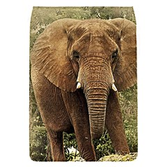 Elephant Animal Art Abstract Flap Covers (s)