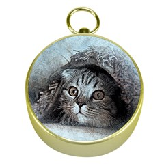 Cat Pet Art Abstract Vintage Gold Compasses