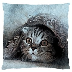Cat Pet Art Abstract Vintage Large Flano Cushion Case (two Sides)