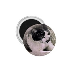 Cat Pet Art Abstract Vintage 1 75  Magnets