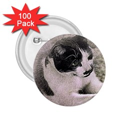 Cat Pet Art Abstract Vintage 2 25  Buttons (100 Pack)