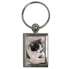Cat Pet Art Abstract Vintage Key Chains (rectangle)
