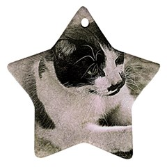 Cat Pet Art Abstract Vintage Star Ornament (two Sides)