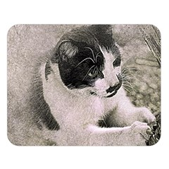 Cat Pet Art Abstract Vintage Double Sided Flano Blanket (large)