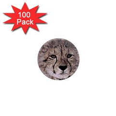 Leopard Art Abstract Vintage Baby 1  Mini Magnets (100 Pack)