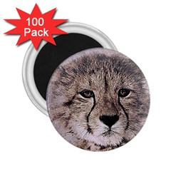 Leopard Art Abstract Vintage Baby 2 25  Magnets (100 Pack)