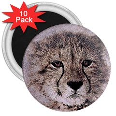 Leopard Art Abstract Vintage Baby 3  Magnets (10 Pack)