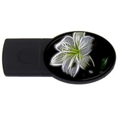 White Lily Flower Nature Beauty Usb Flash Drive Oval (4 Gb)
