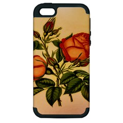 Vintage Flowers Floral Apple Iphone 5 Hardshell Case (pc+silicone)
