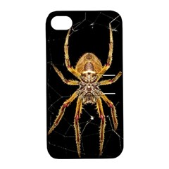 Nsect Macro Spider Colombia Apple Iphone 4/4s Hardshell Case With Stand