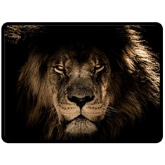 African Lion Mane Close Eyes Double Sided Fleece Blanket (large)