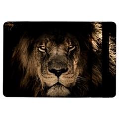 African Lion Mane Close Eyes Ipad Air 2 Flip