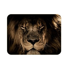 African Lion Mane Close Eyes Double Sided Flano Blanket (mini)
