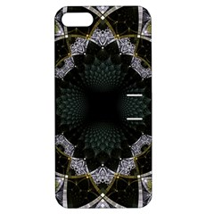 Fractal Aqua Silver Pattern Apple Iphone 5 Hardshell Case With Stand