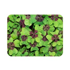 Luck Klee Lucky Clover Vierblattrig Double Sided Flano Blanket (mini)