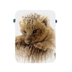 Lion Cub Close Cute Eyes Lookout Apple Ipad 2/3/4 Protective Soft Cases