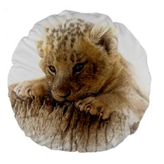 Lion Cub Close Cute Eyes Lookout Large 18  Premium Flano Round Cushions