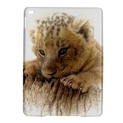 Lion Cub Close Cute Eyes Lookout Ipad Air 2 Hardshell Cases