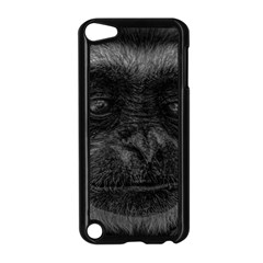 Gibbon Wildlife Indonesia Mammal Apple Ipod Touch 5 Case (black)