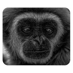 Gibbon Wildlife Indonesia Mammal Double Sided Flano Blanket (small)