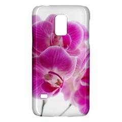 Orchid Phaleonopsis Art Plant Galaxy S5 Mini