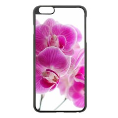 Orchid Phaleonopsis Art Plant Apple Iphone 6 Plus/6s Plus Black Enamel Case
