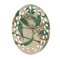 Vintage Watercolour Watercolor Oval Filigree Ornament (two Sides)