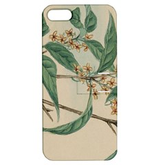 Vintage Watercolour Watercolor Apple Iphone 5 Hardshell Case With Stand