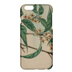 Vintage Watercolour Watercolor Apple Iphone 6 Plus/6s Plus Hardshell Case