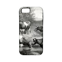 Holstein Fresian Cows Fresian Cows Apple Iphone 5 Classic Hardshell Case (pc+silicone)