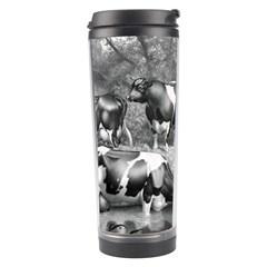 Holstein Fresian Cows Fresian Cows Travel Tumbler