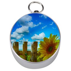 Sunflower Summer Sunny Nature Silver Compasses