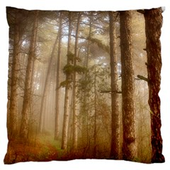 Forest Trees Wood Branc Standard Flano Cushion Case (one Side)