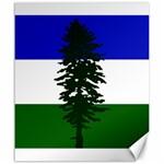 Flag of Cascadia Canvas 20  x 24   24 x20 Canvas - 1