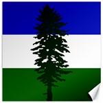 Flag of Cascadia Canvas 16  x 16   16 x16 Canvas - 1