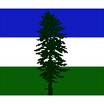 Flag of Cascadia Deluxe Canvas 14  x 11  14  x 11  x 1.5  Stretched Canvas